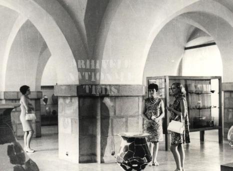1970, Muzeul Banatului