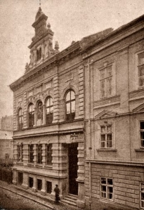 Muzeul Banatean Strada Lonovici nr 8